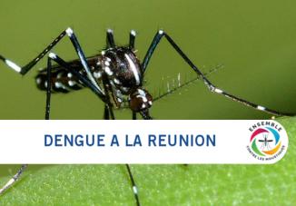 Circulation de la dengue à La Réunion